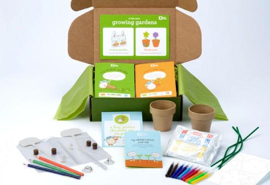 Garden-kiwi-box-537x368.jpg